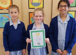 Success in the 500 Words Competition